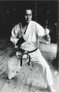 karatemeister2