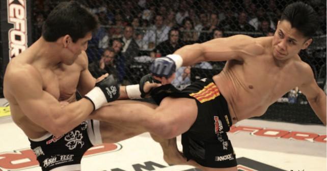 MMA Cung Le