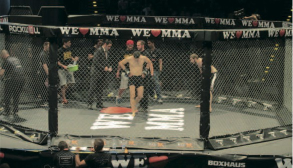 We love MMA cage